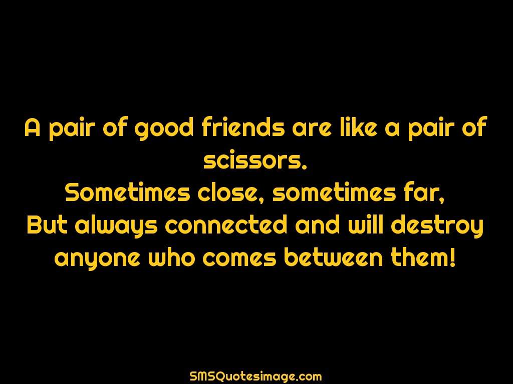Friendship A pair of good friends are like