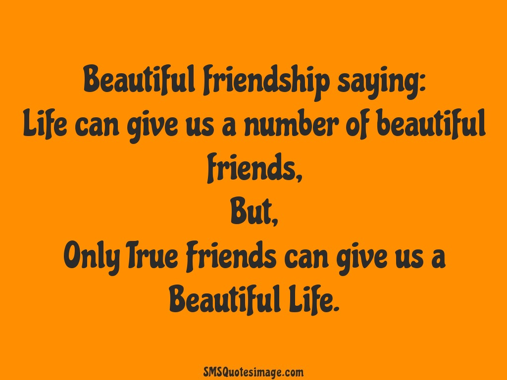 Beautiful Quotes About Friendship New Beautiful Friendship Saying  Friendship  Sms Quotes Image