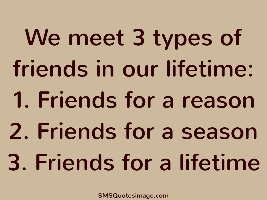 Quote To Friends About Friendship Gorgeous Funny Friendship Quotes For Three Friends Short Funny Quotes And