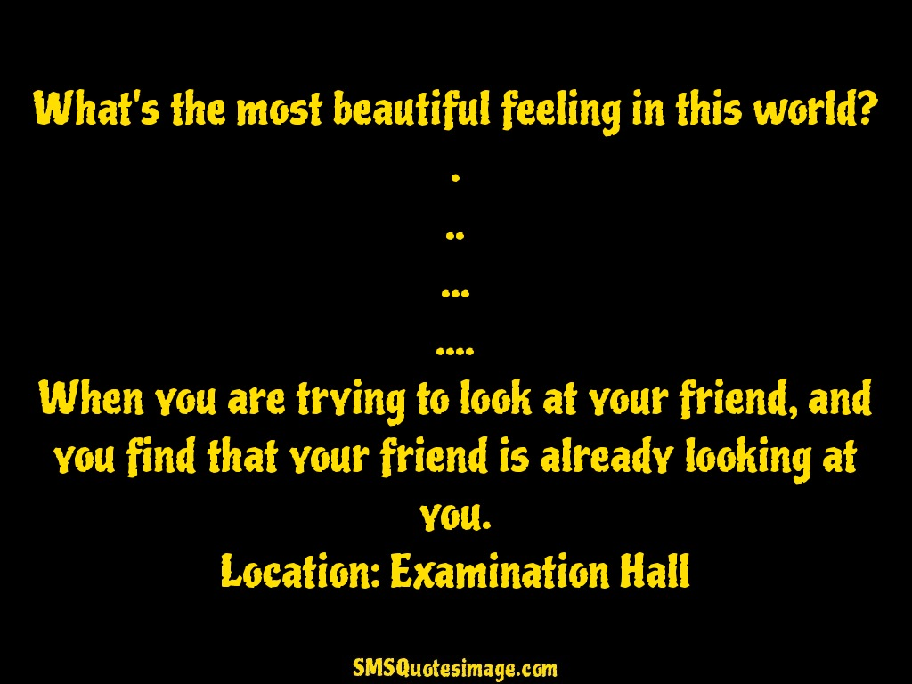 Beautiful Quotes About Friendship What's The Most Beautiful Feeling  Friendship  Sms Quotes Image