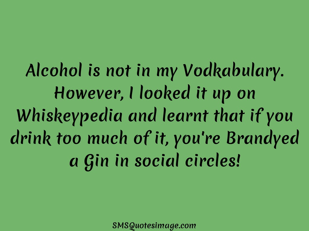Funny Alcohol is not in my Vodkabulary