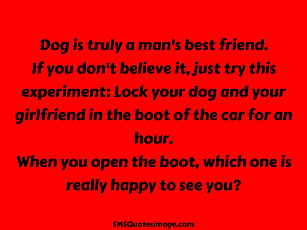 Funny Dog is truly a man's best friend