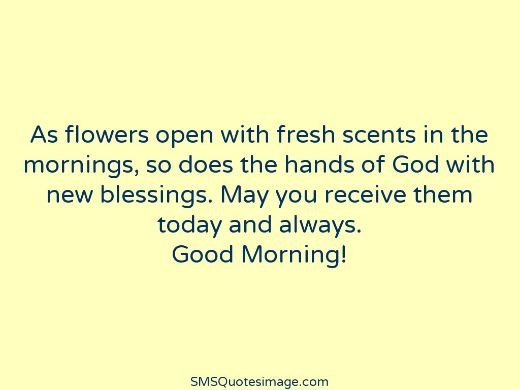 Good Morning Fresh scents in the mornings