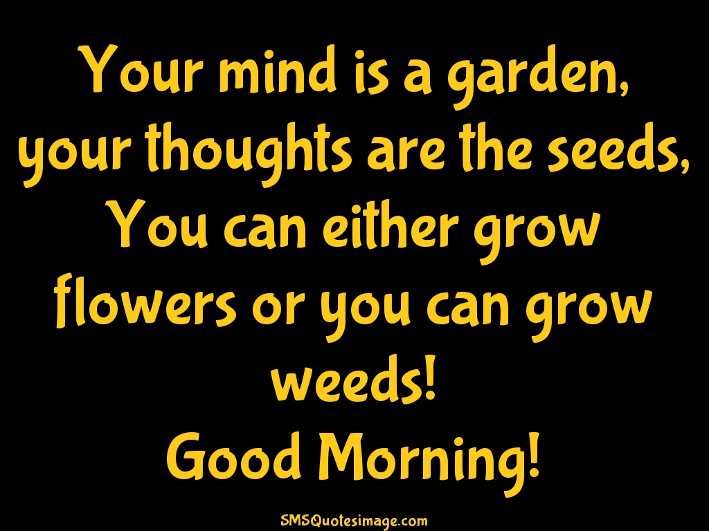 Good Morning Your mind is a garden