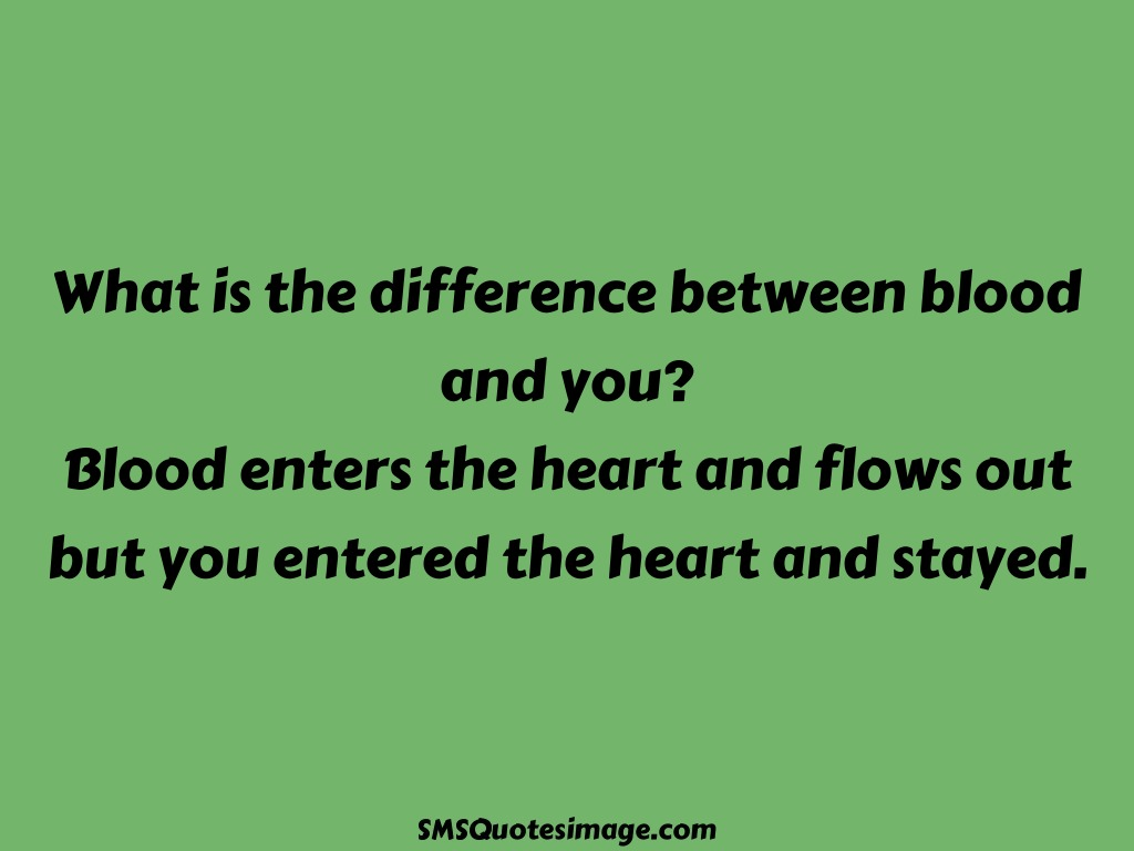 Love Difference between blood and you