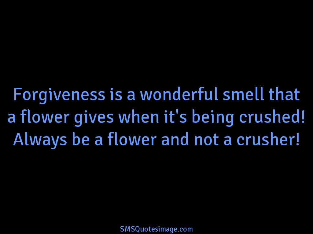 Wise Forgiveness is a wonderful smell