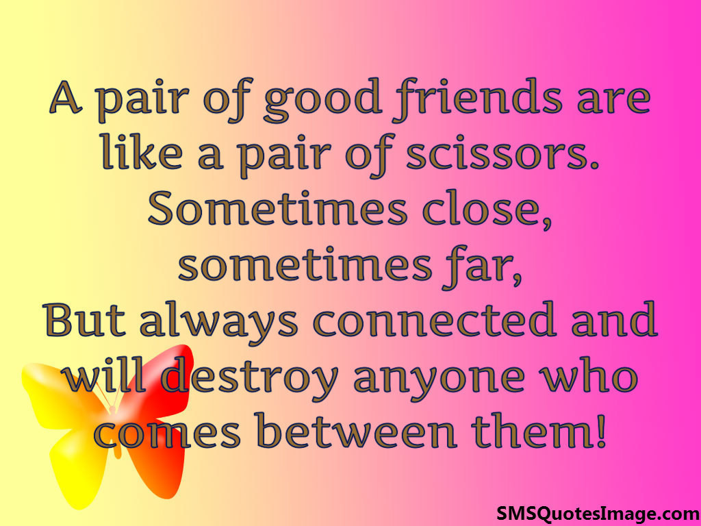 A pair of good friends are like