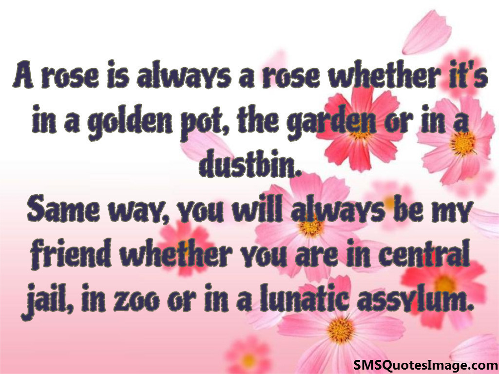 A rose is always a rose whether