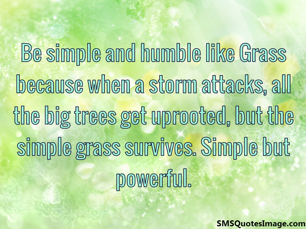 Be simple and humble like Grass