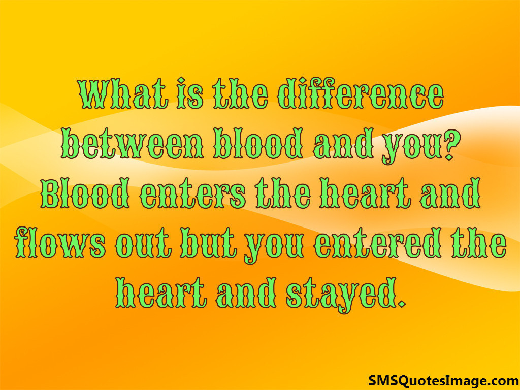 Difference between blood and you