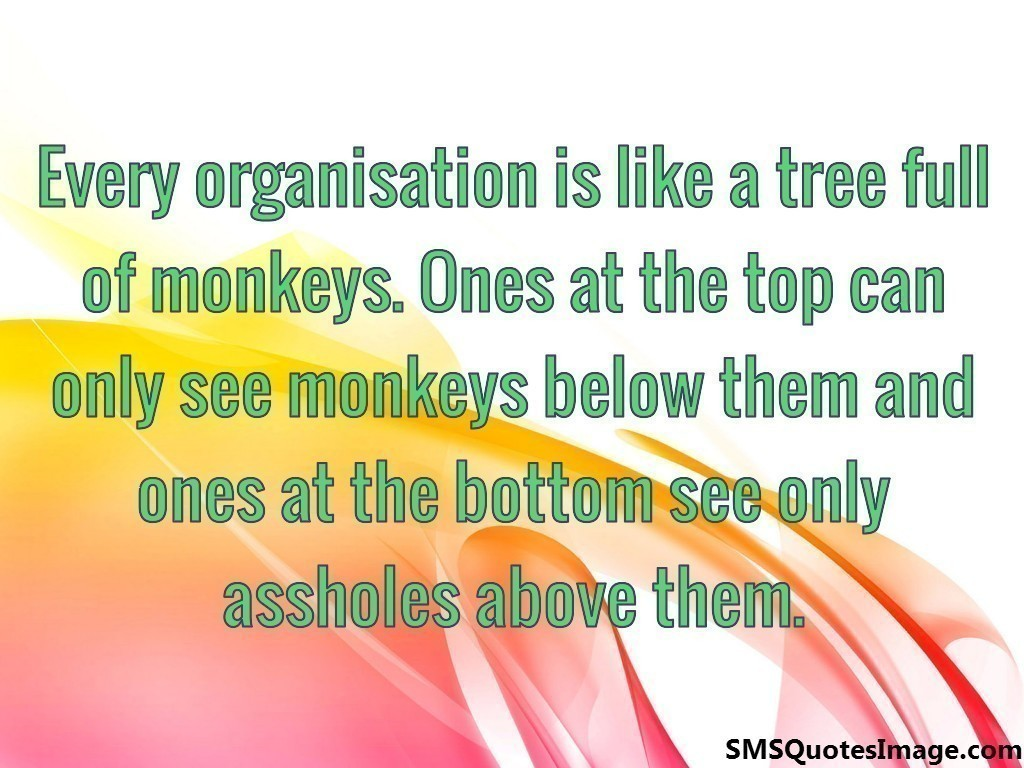 Every organisation is like a tree