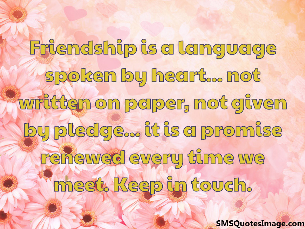 Friendship is a language