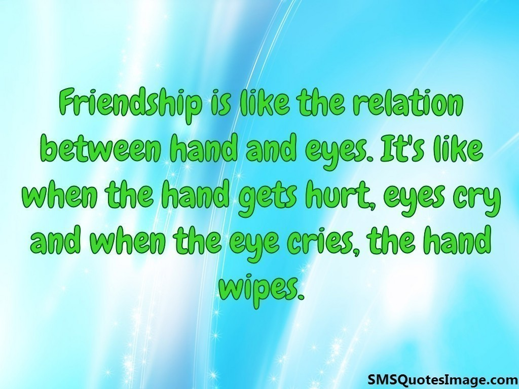 Friendship is like the relation