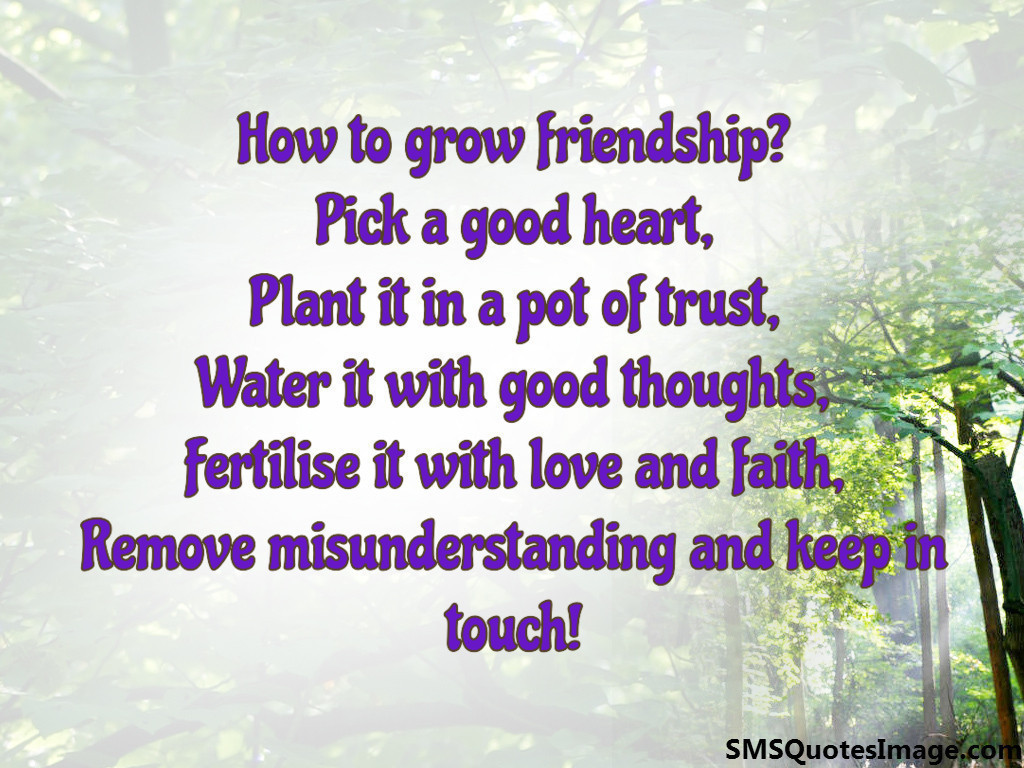 Quotes About Friendship Misunderstanding How To Grow Friendship  Friendship  Sms Quotes Image