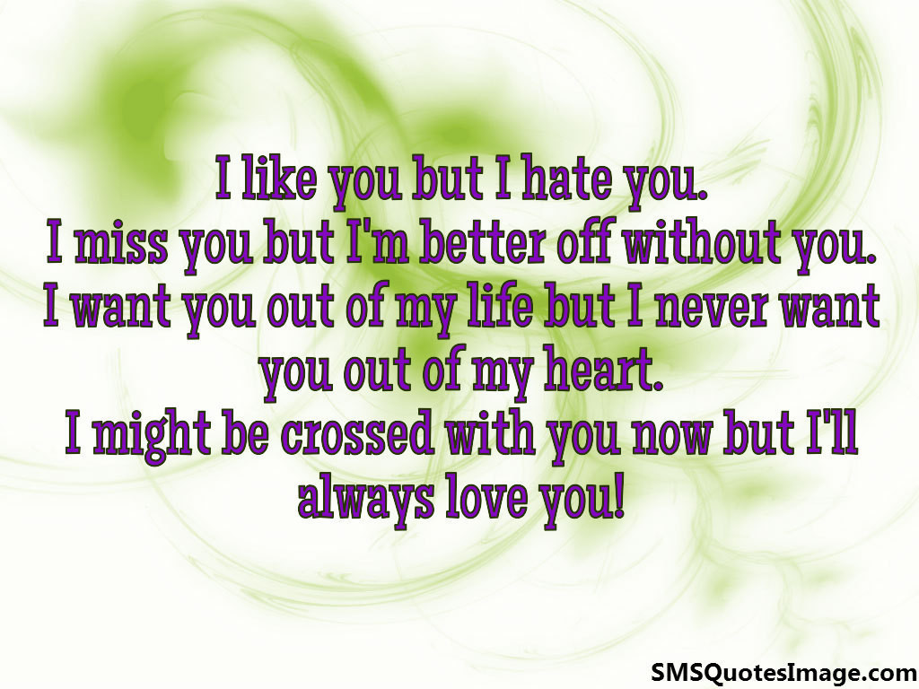 I Like You But I Hate You Love Sms Quotes Image