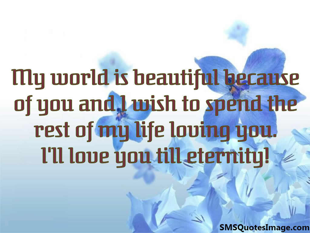 Loving You Quote I'll Love You Till Eternity  Love  Sms Quotes Image