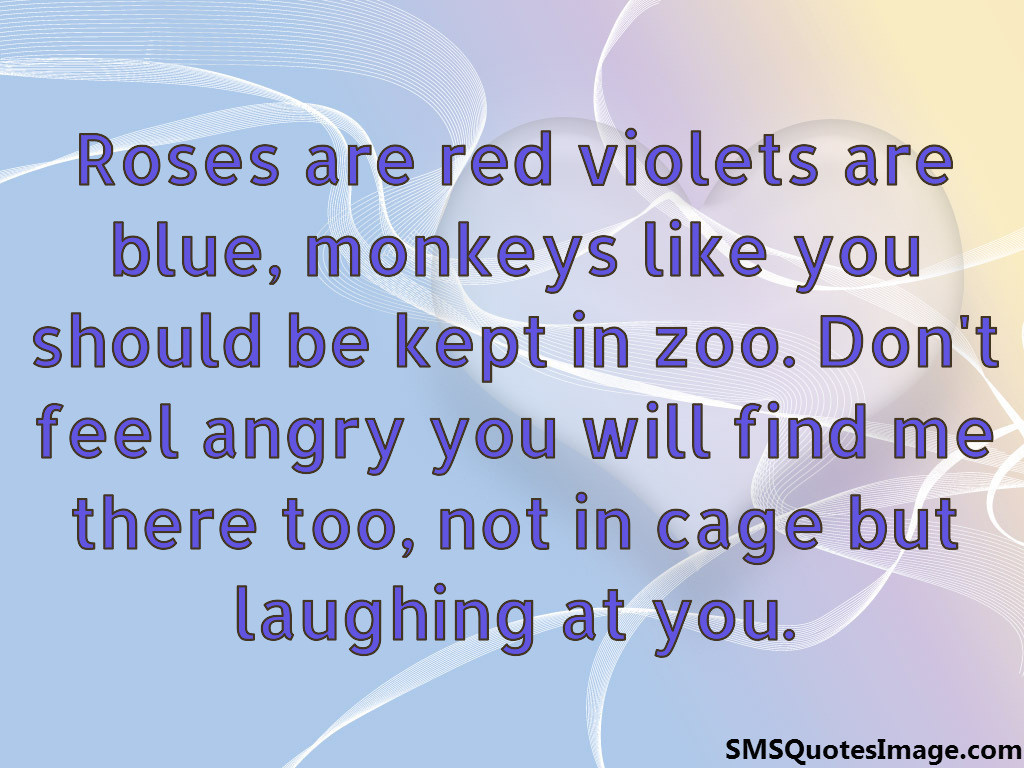 valentines day should be every day quote - Roses are red violets are blue Funny SMS Quotes Image