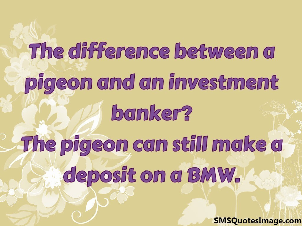 The difference between a pigeon