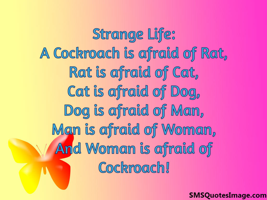 Woman is afraid of Cockroach