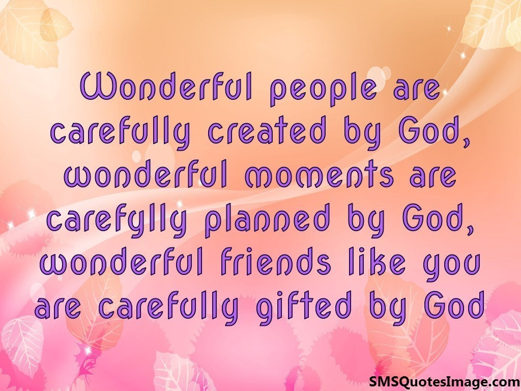 wonderful friends like you friendship sms quotes image